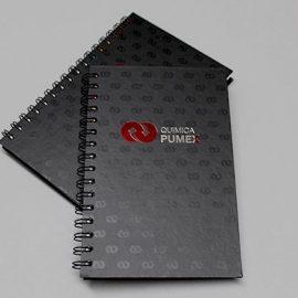cuadernos_curpiel_arillo